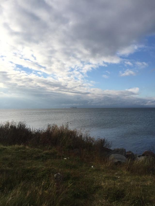 Blickar ut över havet, från det som snart kan vara Sjöstaden