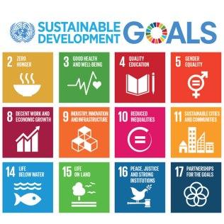 De sjutton globala målen