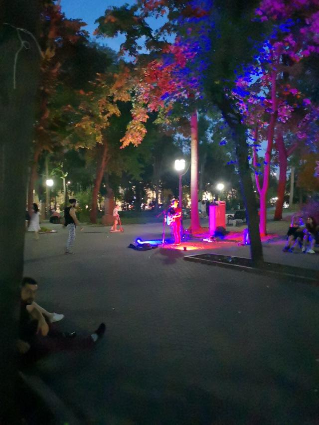 Kvällsbild från parken