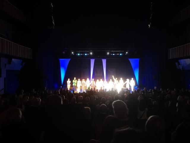 Bild på ensemblen från Stars of Musicals