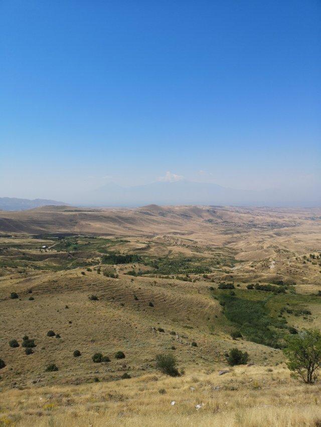 Ett grönt böljande landskap med berget Ararat längs bort